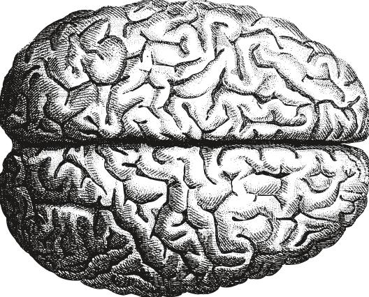 Drawn brains tumblr transparent Ethical Phillips (WPP) T Decision