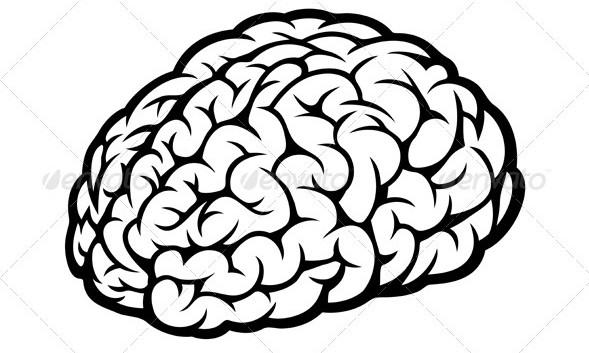 Drawn brain transparent background #6