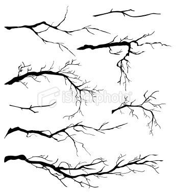 Drawn branch #1