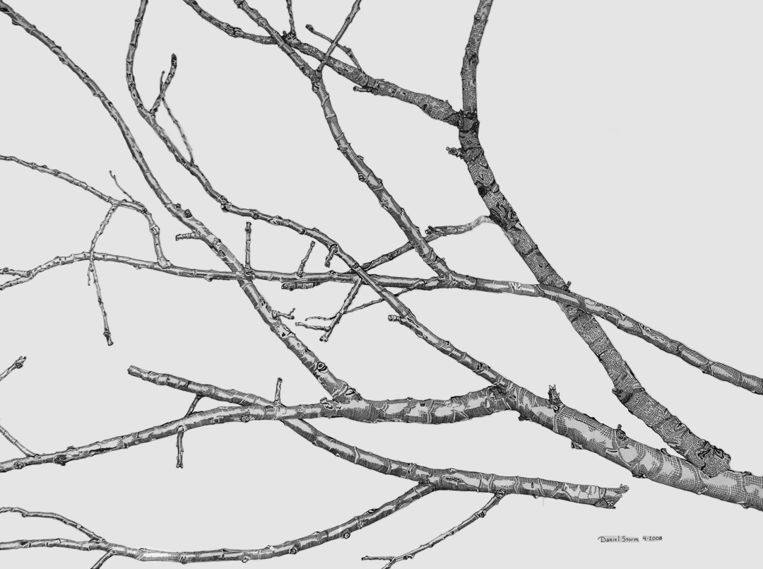 Drawn branch #2