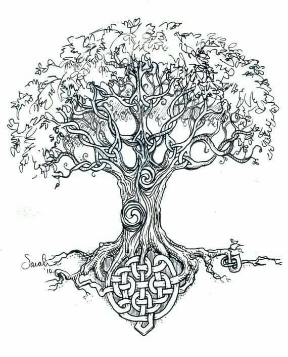 Drawn ivy branch Of of Celtic ideas