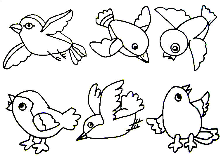 Drawn brds coloring page Bird Bird printables  crafts