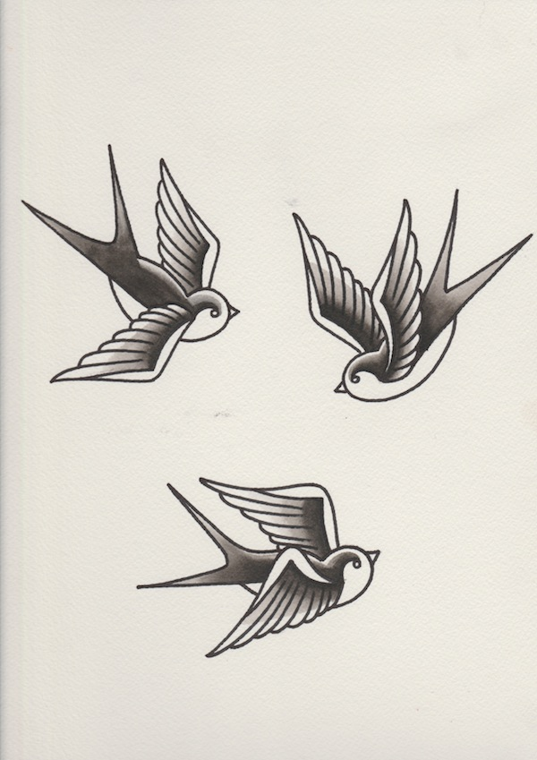 Drawn swallow Swallows shading rose with black