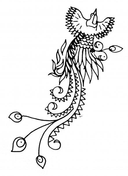 Drawn brds paradise Design @deviantART Bird by deviantart