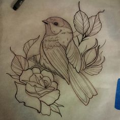 Drawn brds traditional Berry @providencetattoos appointment A drawing