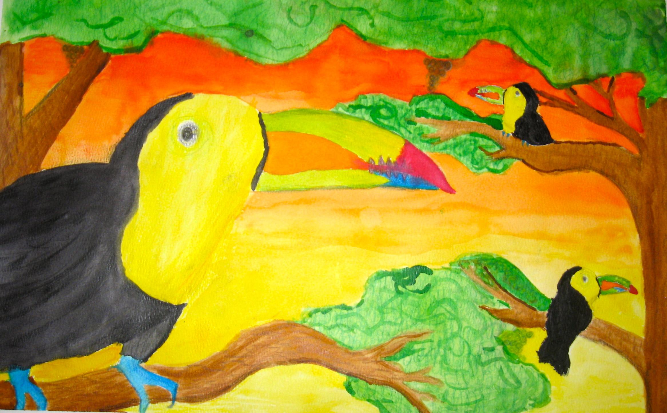 Drawn brds tropical bird Bird watercolor a for or