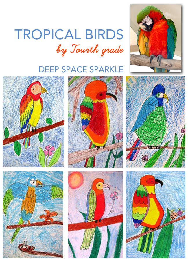 Drawn brds tropical bird Projects Drawings lessons Parrot ·