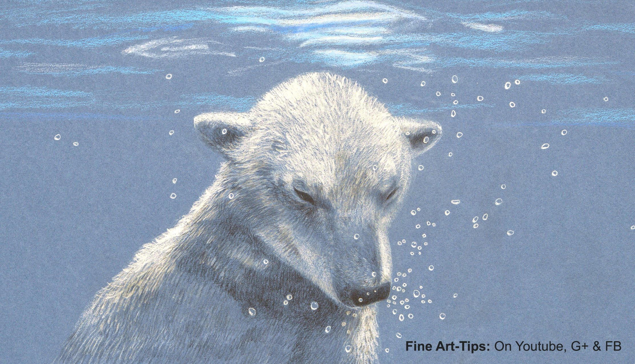 Drawn polar  bear pencil drawing How Pencils a With Under