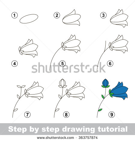 Drawn garden step by step #15