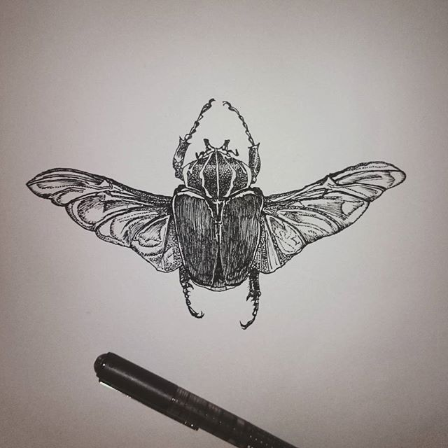 Drawn bugs dotwork #dotwork #beetle #beetledrawing #inkdrawing Little