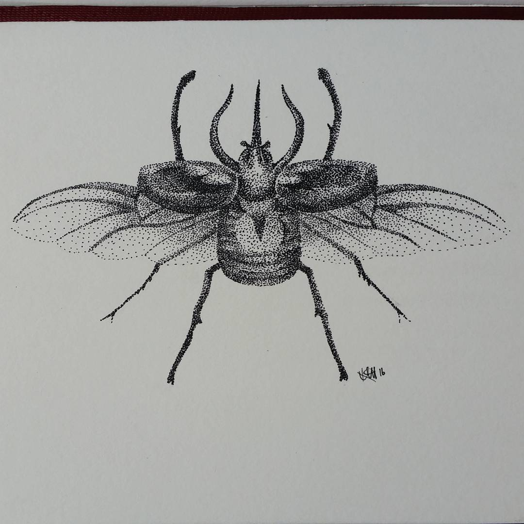 Drawn bugs dotwork #drawing #dot #pointillism #ink beetle