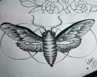 Drawn bugs dotwork Circles Etsy Moth Mandala Tattoo