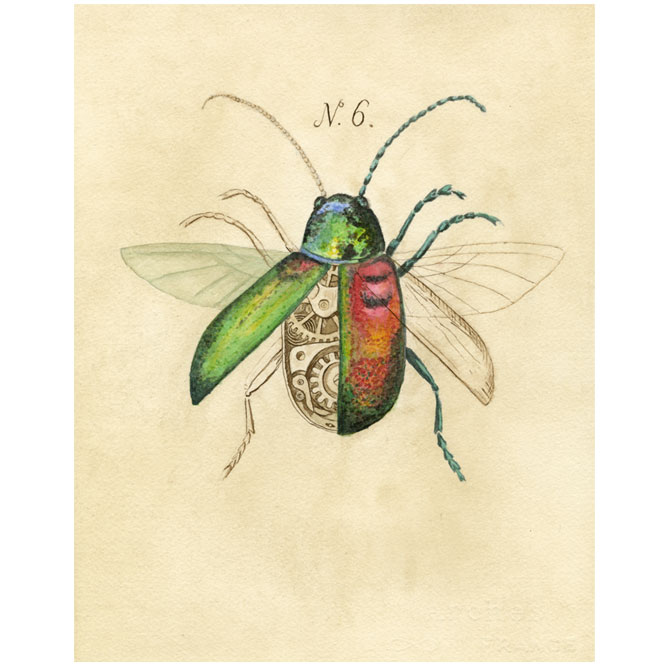 Drawn bug beetle By Gretchen drawing gift Best
