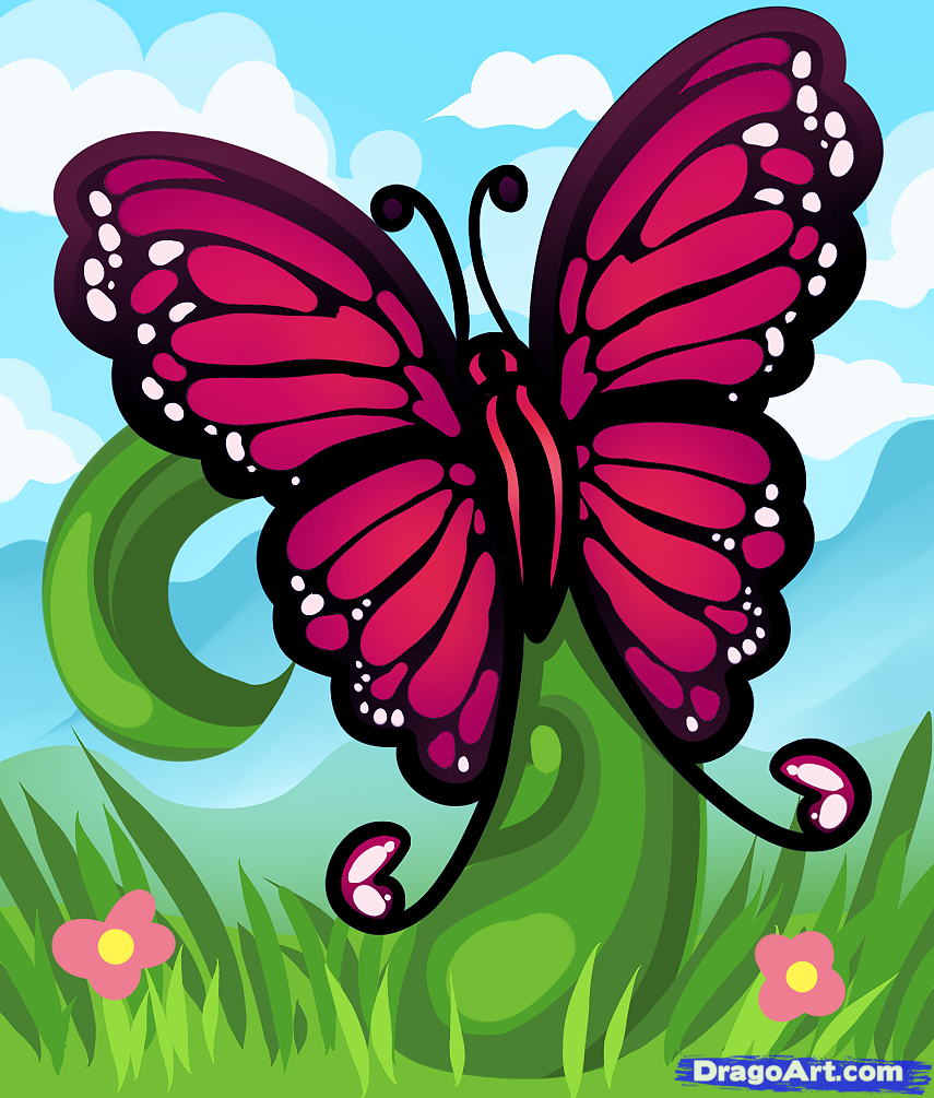 Drawn butterfly dragoart Draw to Bugs Animals how