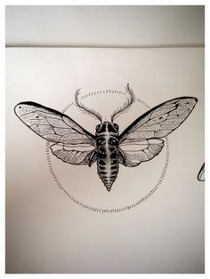 Drawn bugs dotwork Pinteres… Search Search dotwork Google