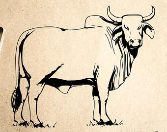 Drawn bull brahma bull 2 2 Brahman Rubber x
