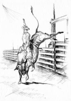 Drawn bull rodeo bull Art by Drawing Peter Western