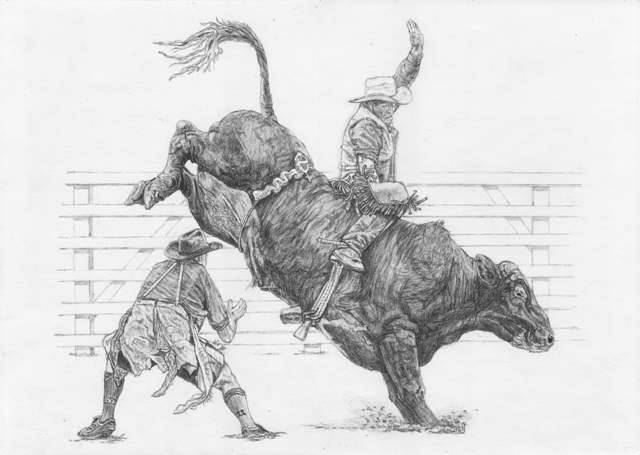 Drawn bull rodeo bull WetCanvas [Archive] Four Drawings Rodeo