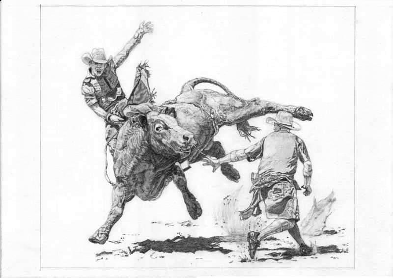 Drawn bull rodeo bull WetCanvas [Archive] Rider WIP Bull