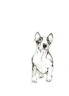 Drawn bull terrier terrier dog #Art sketch #Tattoo and Art