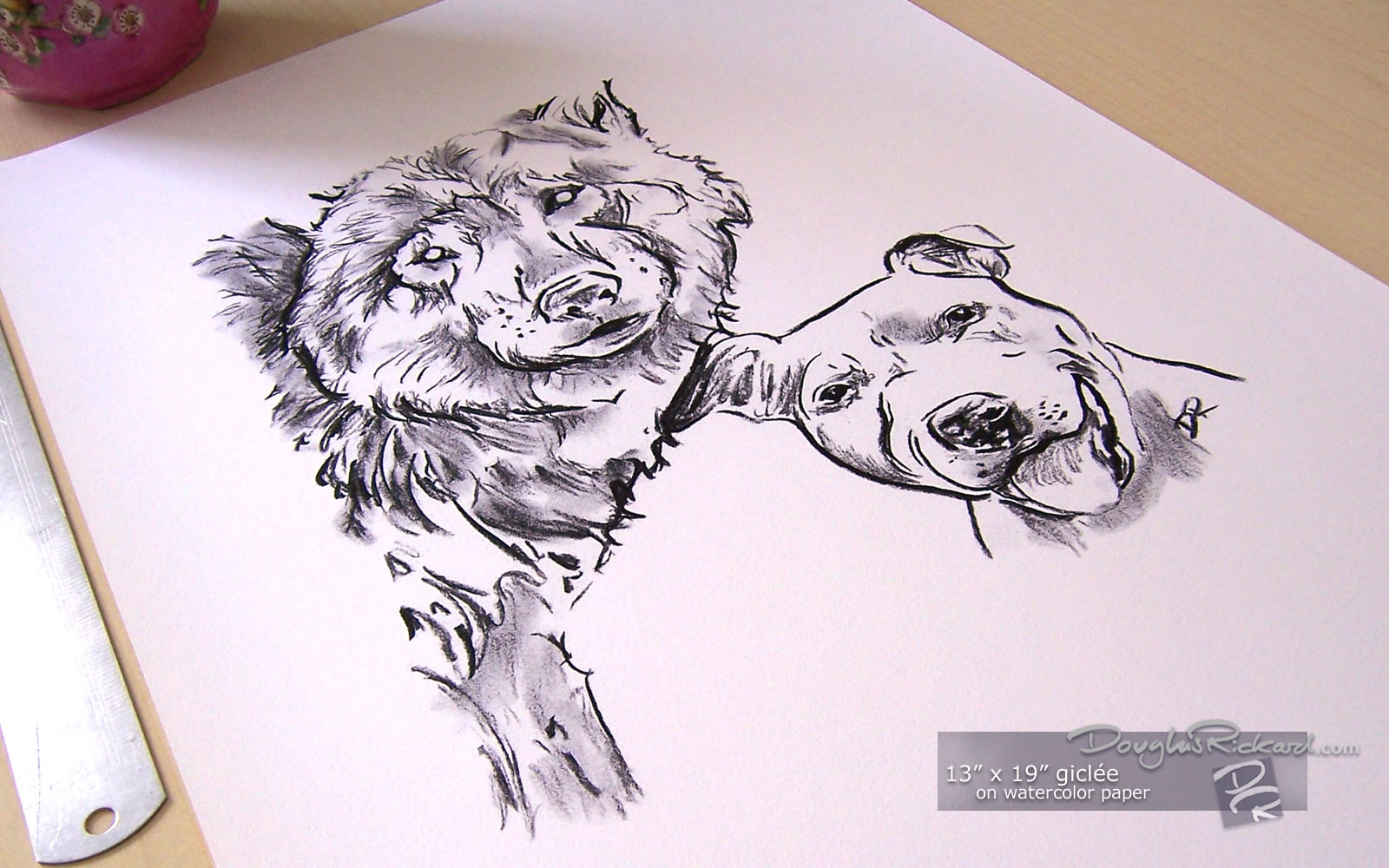 Drawn bull terrier terrier dog Wolf Size Staffordshire The Wolf