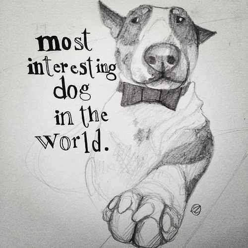 Drawn bull terrier terrier dog Ideas Pinterest on terrier The