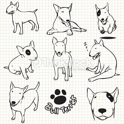 Drawn bull terrier terrier dog : paper for use on
