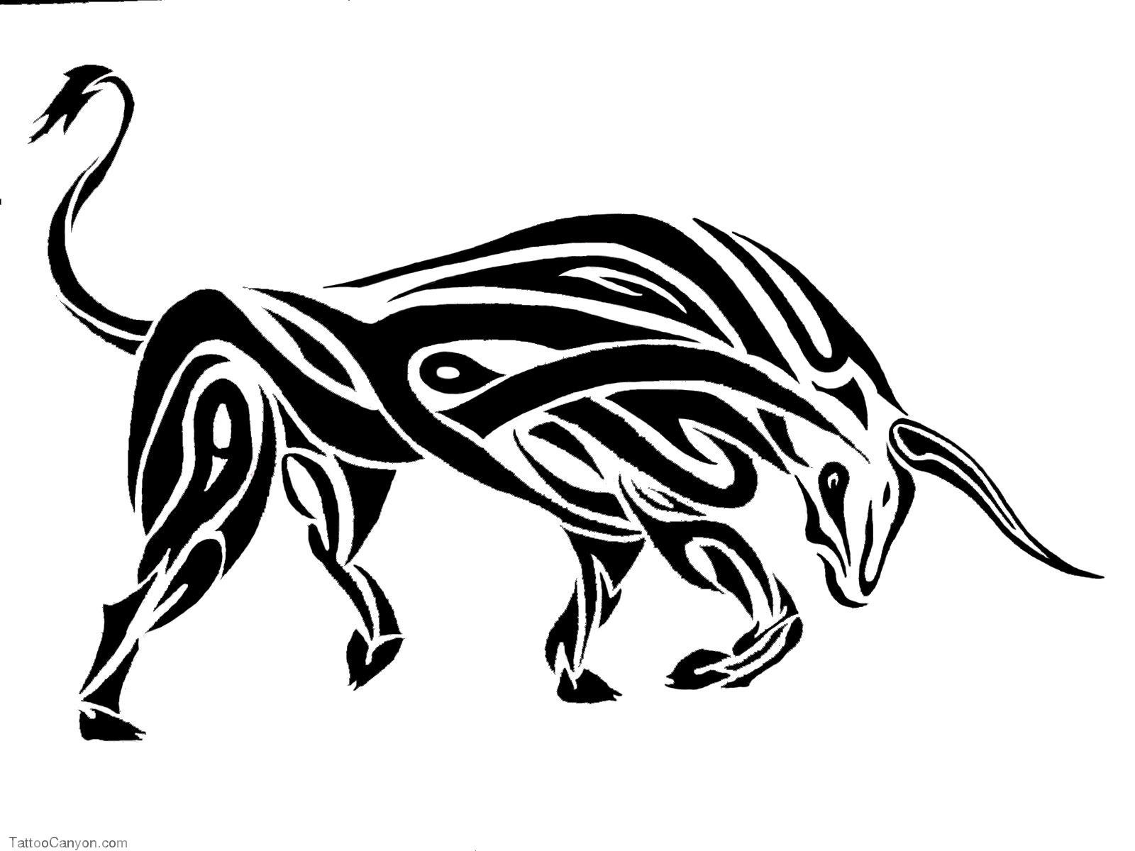 Drawn bull tribal Images on best tribal bull