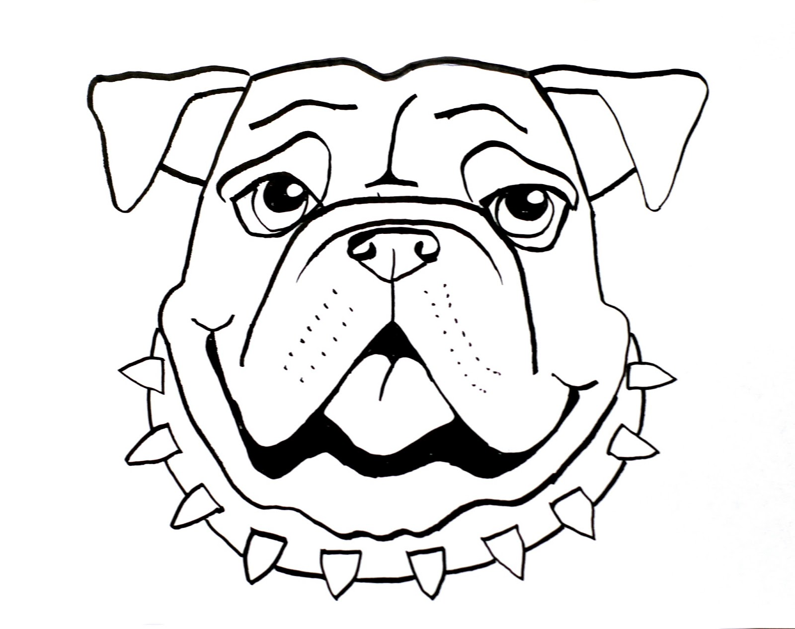 Drawn bulldog Through Bull in middle coming