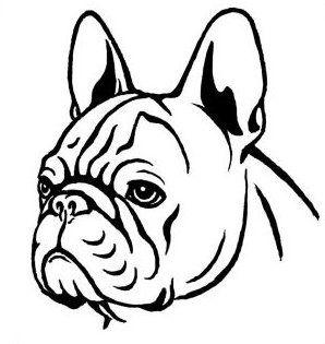 Drawn bulldog Bulldog Google best about Buscar