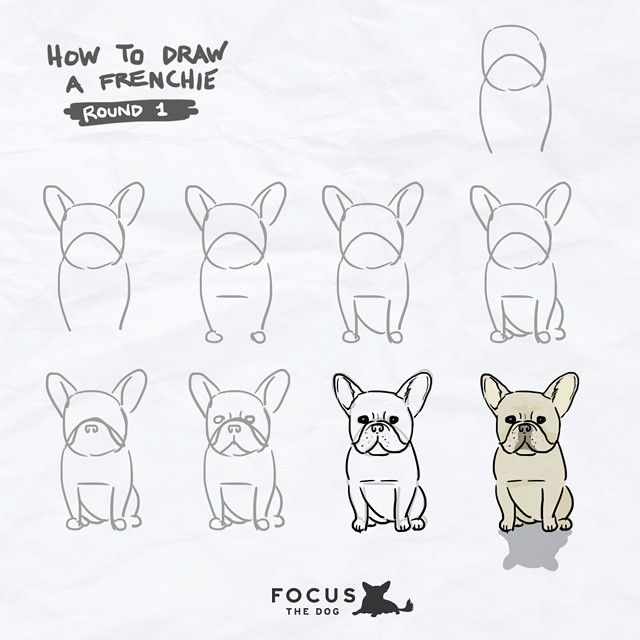 Drawn bulldog animated Drawing post these on continue