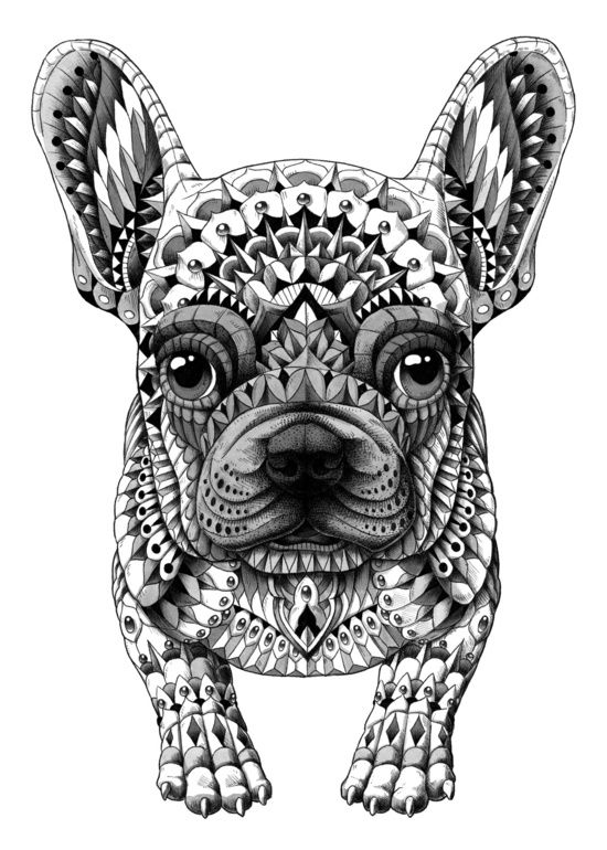 Drawn bulldog black and white And and decorated cool bulldog