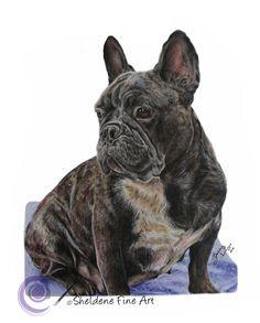 Drawn bulldog disney English French beautiful  Frenchie