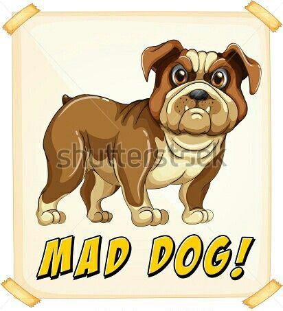Drawn bulldog mad dog Cute on 298 images Find