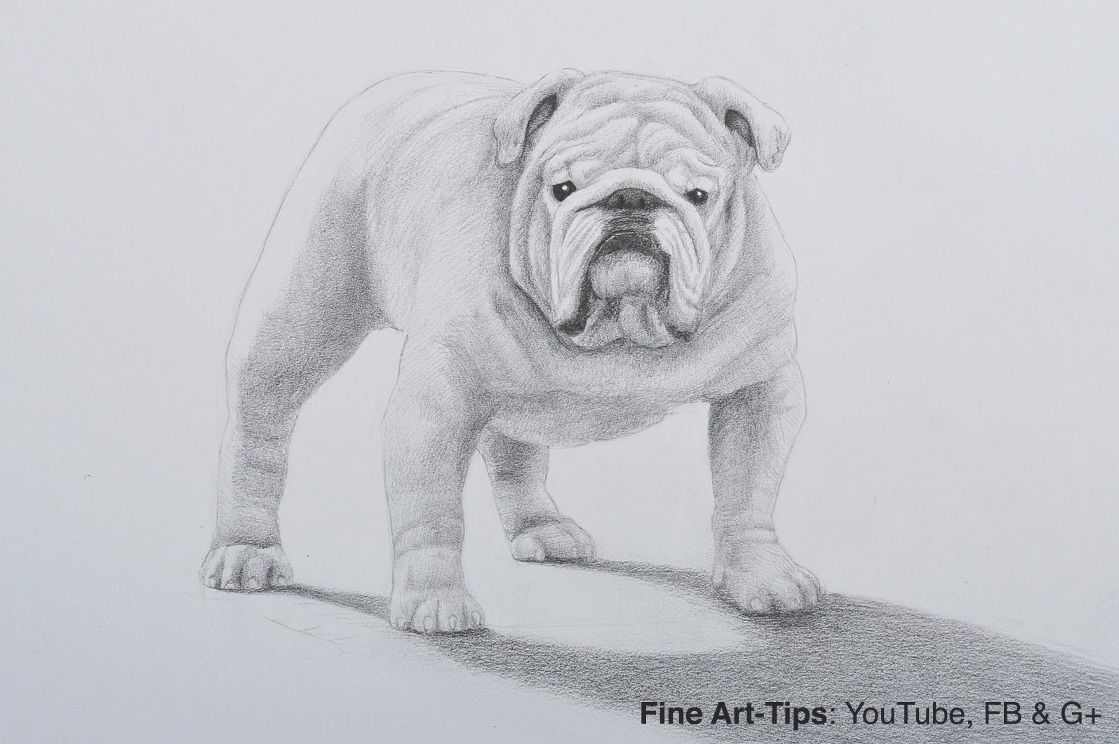 Drawn bulldog pencil drawing Pencil Dog With Dog How