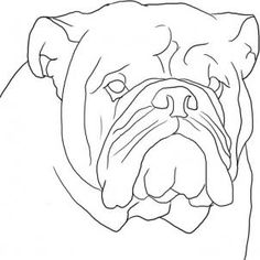 Drawn bulldog pencil step by step Pinterest english 8 art draw