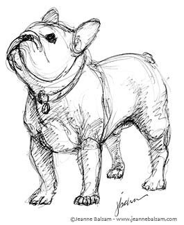 Drawn bulldog sketch Because French Still Dreamer A