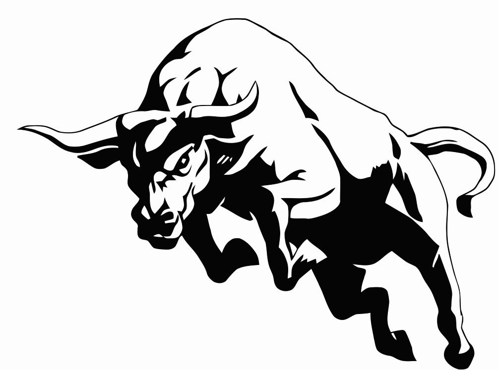 Drawn bulls Art North Clip Bulls Free