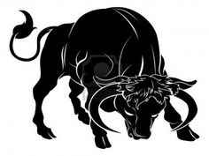 Drawn bulls rock Traditional  impeccable Traditional the