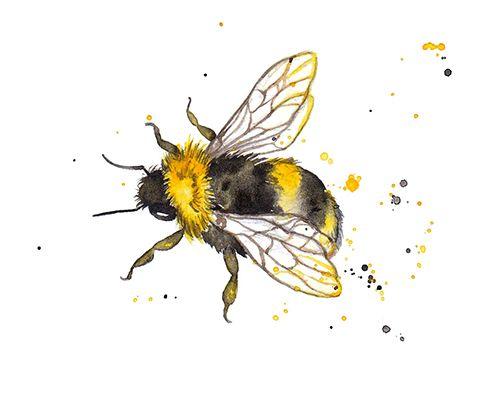 Drawn bumblebee Bumble 25+ Bees Amy &