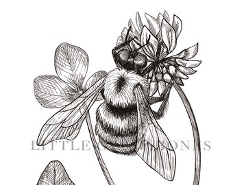 Drawn bumblebee botanical Botanical and Etsy Bumblebee Bee