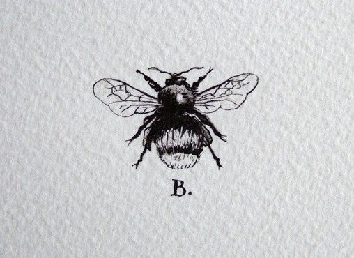 Drawn bumblebee detailed Kind on the Bee letter