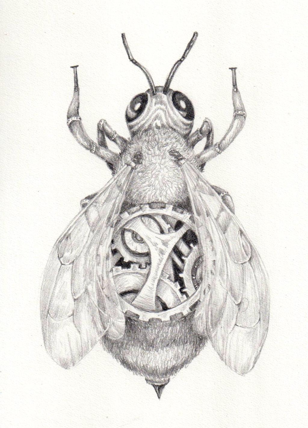 Drawn bumblebee steampunk Bluepainthorse SteamPunk by by DeviantArt