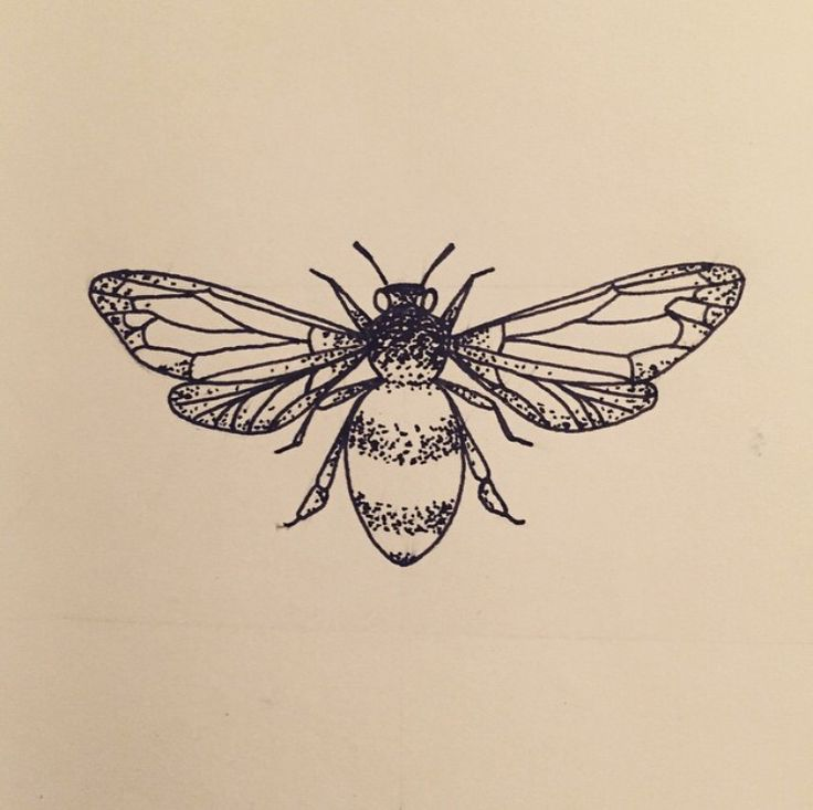 Drawn bugs dotwork  Bee drawing Bee 25+