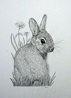 Drawn rabbid sketch Of Vick flower bunny drawing