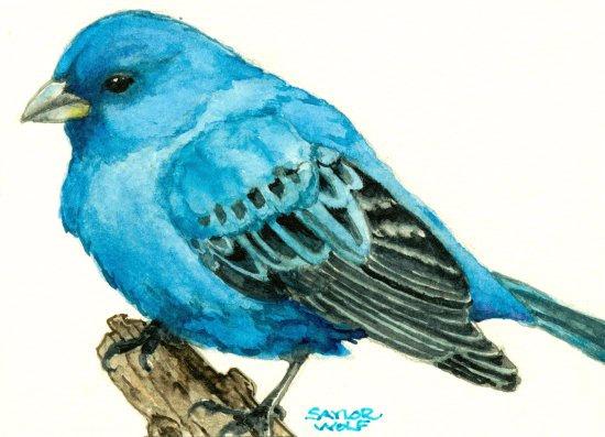 Drawn bunting vector Print Indigo Watercolor Bunting of