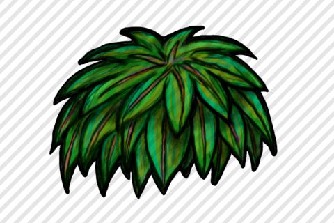 Drawn bush By bush Game bush Drawn