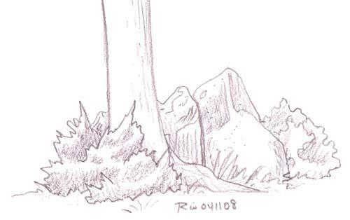 Drawn bush Bush Drawing jpg Draw To