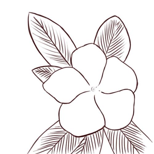 Drawn bush easy Easy Easy plant drawings photo#1
