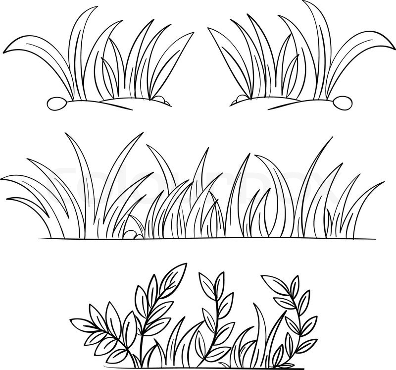 Drawn bush grass Grass Draw Step vector
